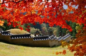 Góp chụp Cung Điện Gwangneung vào mùa Thu